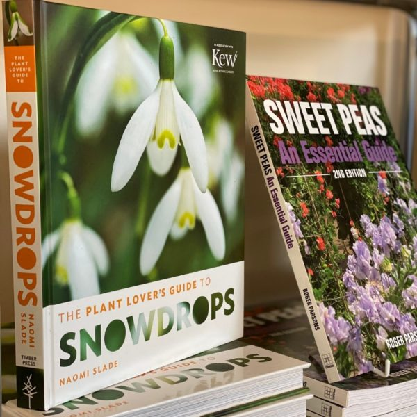 The Plant Lovers Guide to Snowdrops